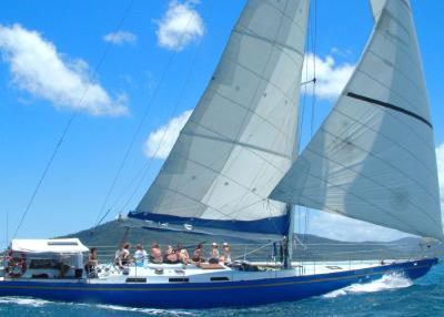 1 Day Adventure Sailing on Southern Cross