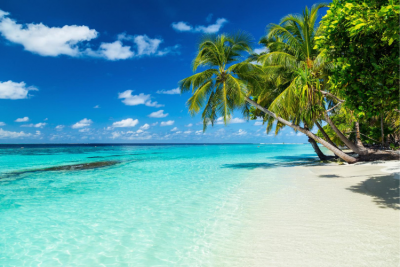 16 Day Sri Lanka and Maldives Tour Package
