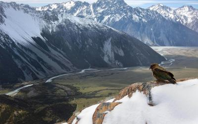 National Park of Mount Cook