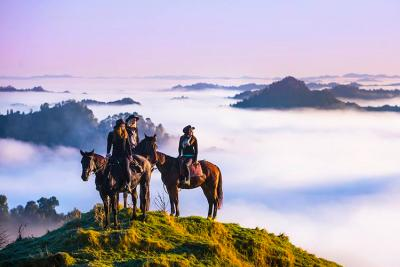 Back Country Horse Trek