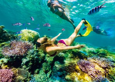 7 Days, 3 Islands Coconut Cruiser Fiji Package