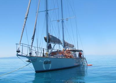 Green Island and Great Barrier Reef Sailing Day Trip